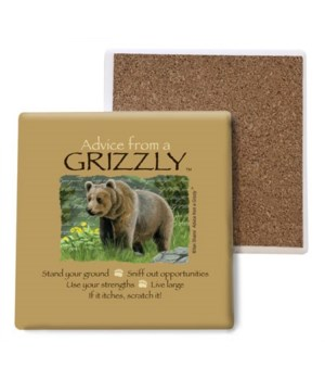 Advice from a Grizzly coaster bulk