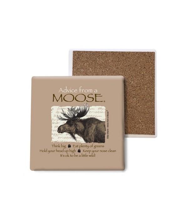 Advice from a Moose coaster bulk