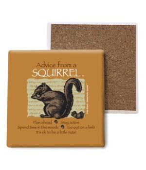 Advice from a Squirrel coaster bulk
