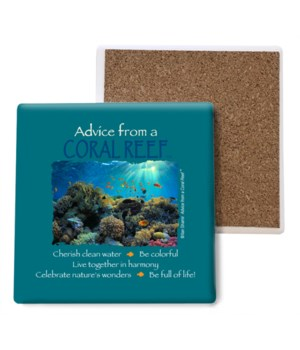 Advice from a Coral Reef Coaster Bulk