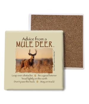 Advice from a Mule Deer Bulk Coaster