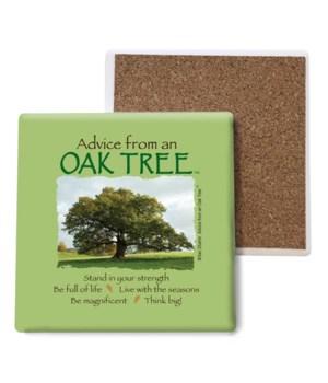 Advice from an Oak Tree Bulk Coaster