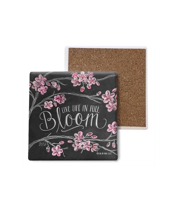 Live life in full bloom coaster bulk