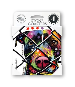 Pitbull - 9 - Choose Adoption  coaster 4