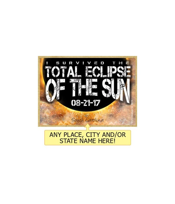 I survived the total eclipse of the sun