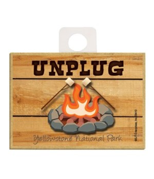Unplug - chairs next to campfire Magnet