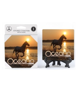 Oceano, CA - noreedom horses