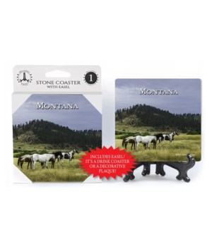 Montana - Horses in valley w/yellow gras