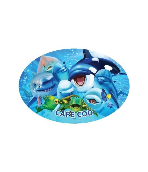 Sea Animals - Michael Searle oval magnet