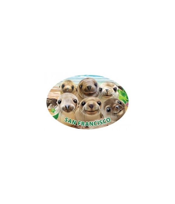 Sea lions - Michael Searle oval magnet (