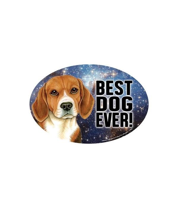 """Beagle (Best Dog Ever!) 6"""" Oval Magnet"""