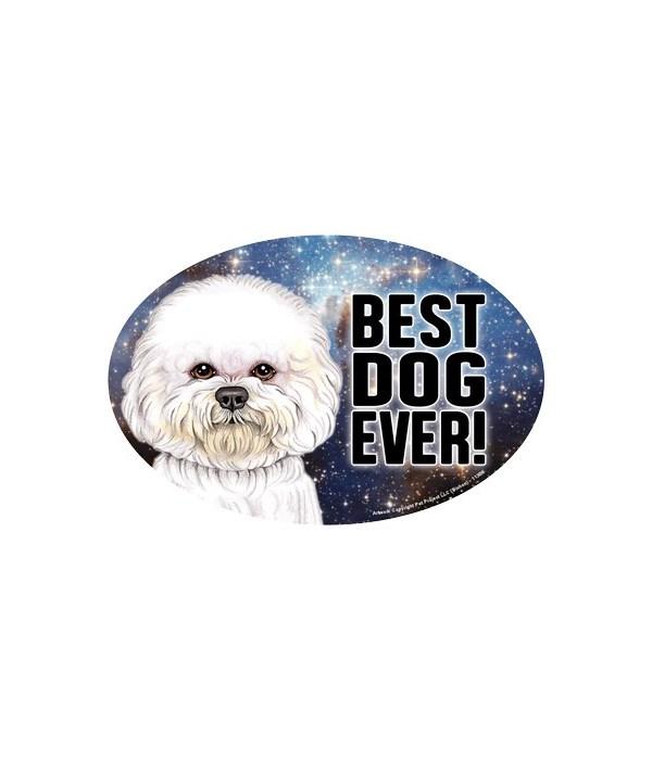 "Bichon (Best Dog Ever!) 6"" Oval Magnet"