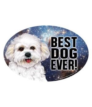"""Bichon (puppy cut) (Best Dog Ever!) 6"""" O"""
