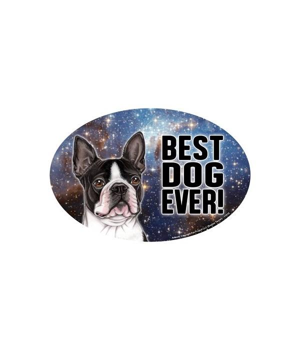 "Boston Terrier (Best Dog Ever!) 6"" Oval"