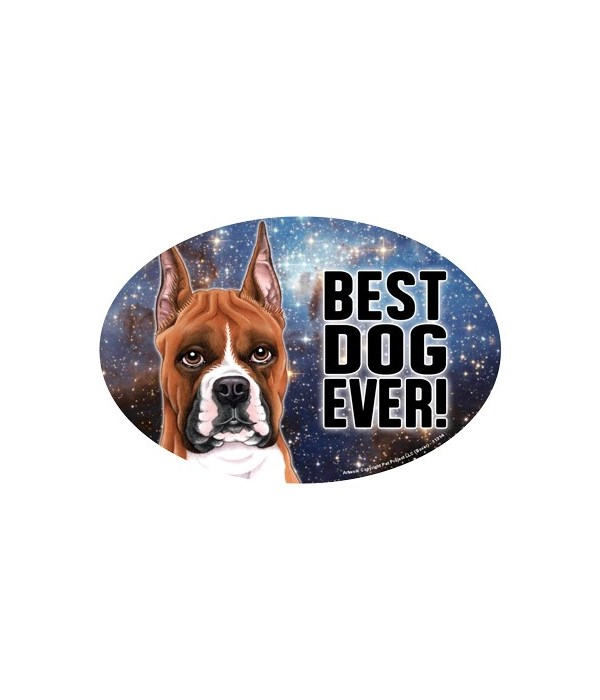 """Boxer (cropped ears) (Best Dog Ever!) 6"""""""