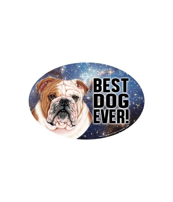 "Bulldog (Best Dog Ever!) 6"" Oval Magnet"