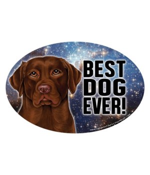 "Chocolate Lab (Best Dog Ever!) 6"" Oval M"