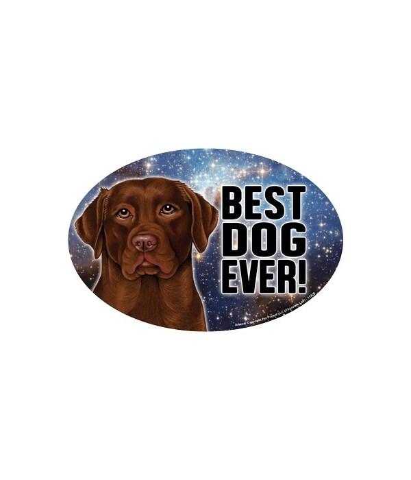 "Chocolate Lab (Best Dog Ever!) 6"" Oval M"