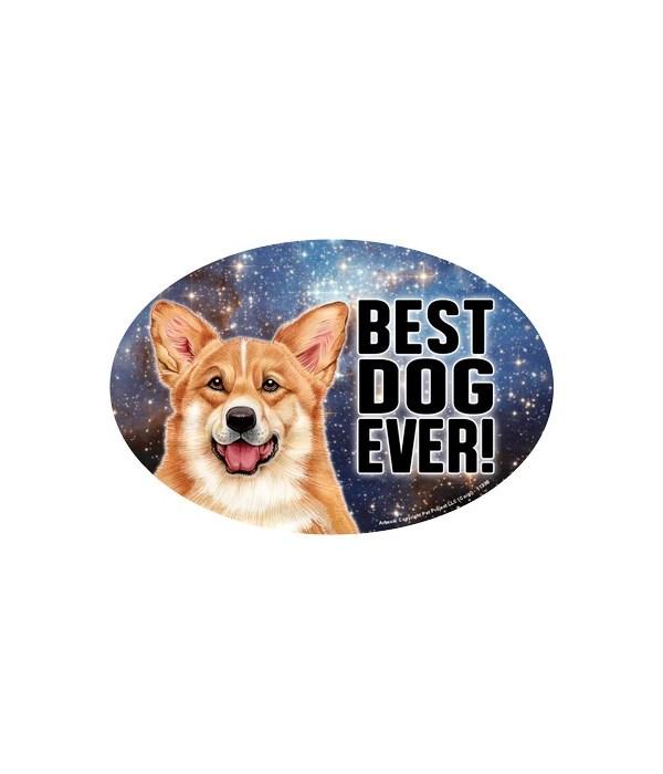 """Corgi (Best Dog Ever!) 6"""" Oval Magnet"""