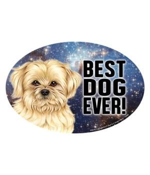 "Lhasa Apso (Best Dog Ever!) 6"" Oval Magn"