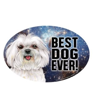 "Maltese (puppy cut) (Best Dog Ever!) 6"""