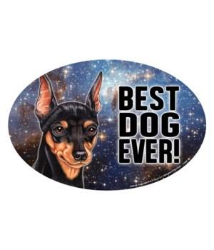 """Miniature Pinscher (Best Dog Ever!) 6"""" O"""