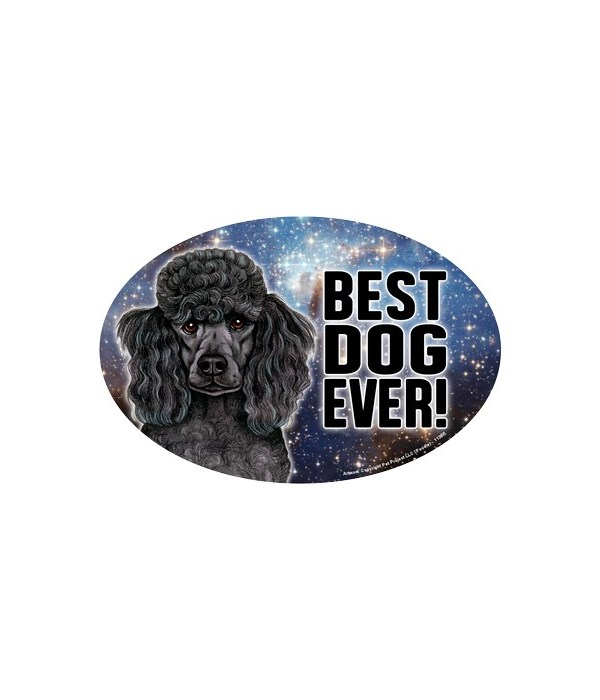 """Poodle (black) (Best Dog Ever!) 6"""" Oval"""