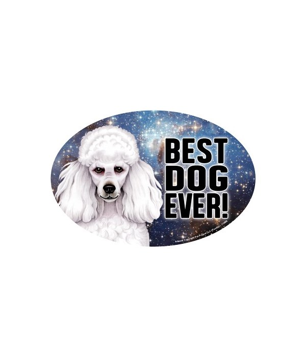 """Poodle (white) (Best Dog Ever!) 6"""" Oval"""