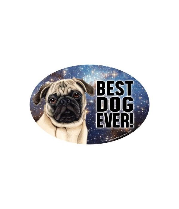 """Pug (tan) (Best Dog Ever!) 6"""" Oval Magne"""