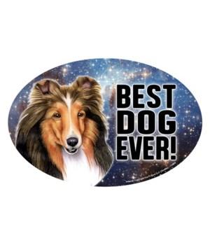 """Sheltie (Best Dog Ever!) 6"""" Oval Magnet"""