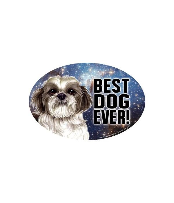 """Shih Tzu (puppy cut) (Best Dog Ever!) 6"""""""