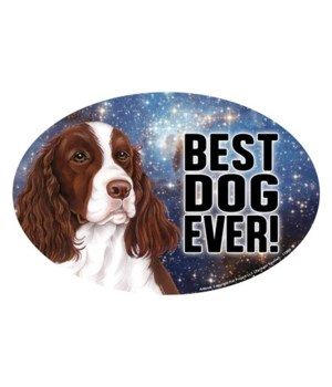 """Springer Spaniel (Best Dog Ever!) 6"""" Ova"""