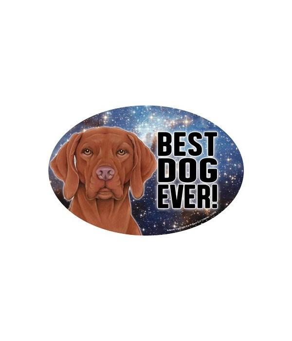 """Vizsla (Best Dog Ever!) 6"""" Oval Magnet"""
