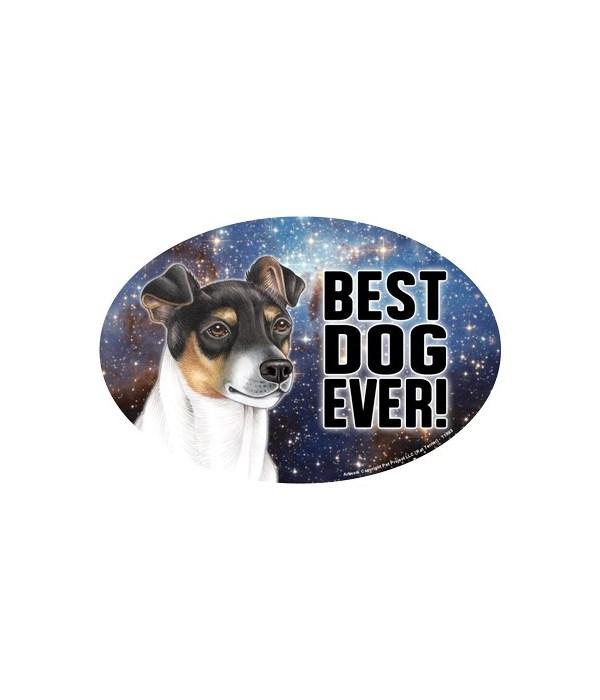 """Rat Terrier (Best Dog Ever!) 6"""" Oval Mag"""