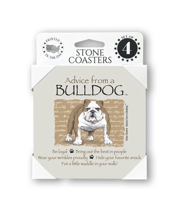 Advice from a Bulldog  coaster 4-pack