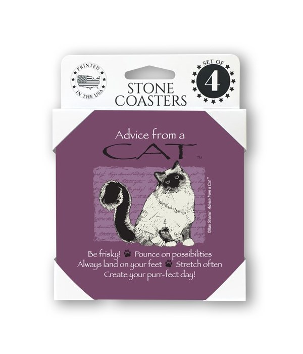 Advice from a Cat  coaster 4-pack