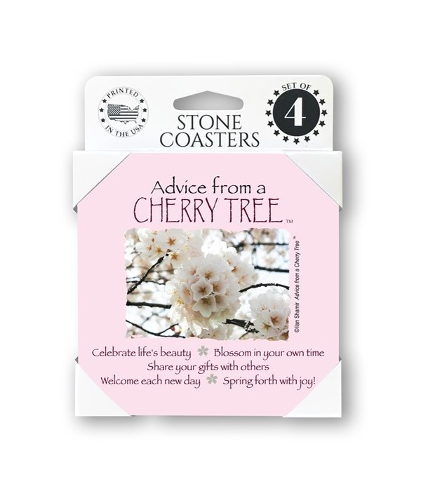 Advice from a Cherry Tree  coaster 4-pac
