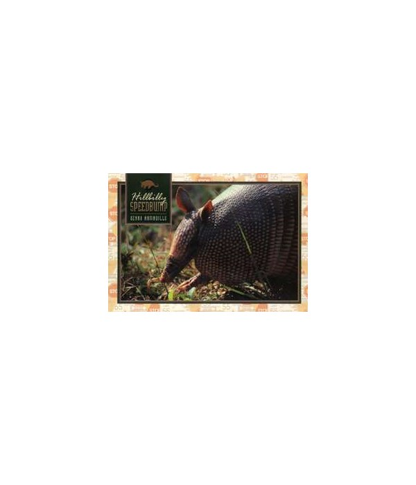 Hillbilly Speedbump Postcard