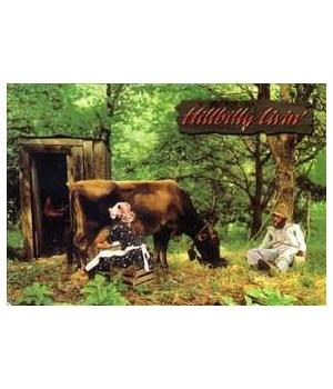 Hillbilly Living Postcard