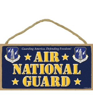 Air National Guard 5x10
