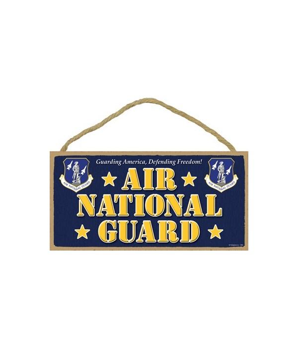 Air National Guard 5x10