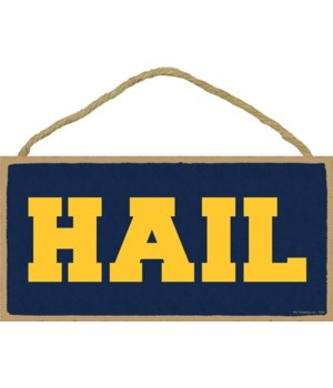 HAIL (navy & gold) 5x10