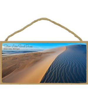 Silver Lake Sand Dunes - Silver Lake, Mi