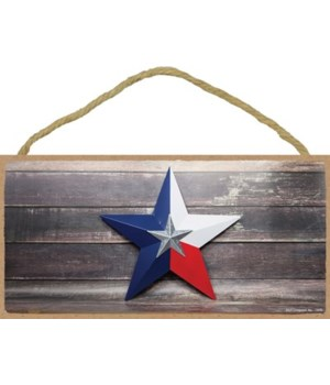 Texas - Red, White, and Blue Star in Fro