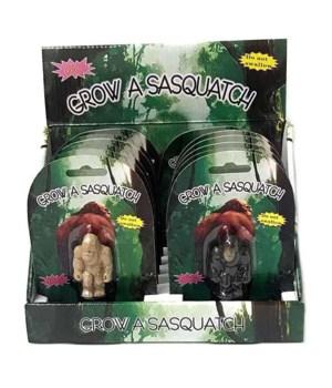 Growing Sasquatch 3/A-12pc dsp