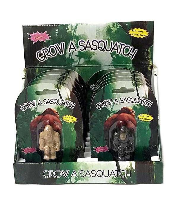 Growing Sasquatch 3/A-12PC Display