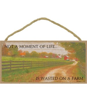 not a moment of life is wasted  5x10 sig