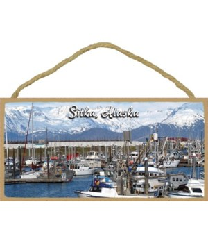 Sitka, Alaska - Harbor in Alaska with fi