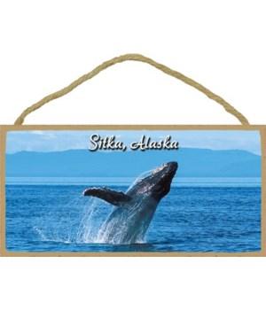 Sitka, Alaska - Humpback whale breaching