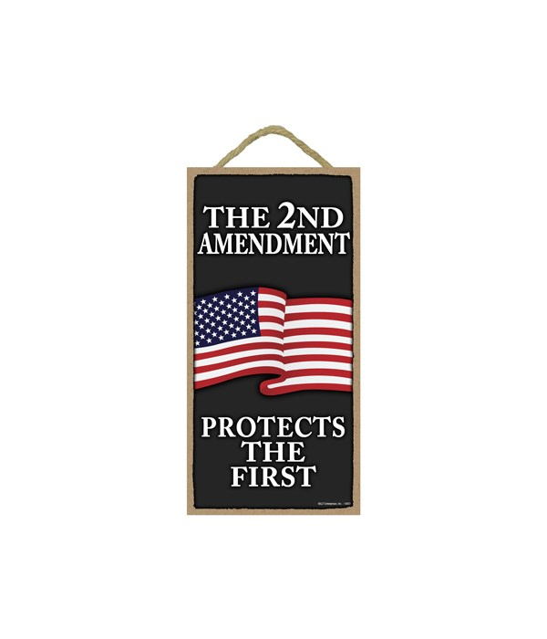The 2nd Amendment - Protects the First (